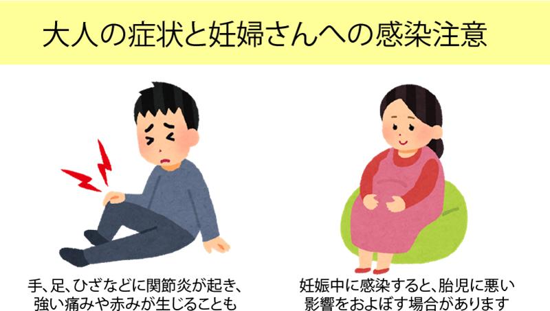 大人の症状と妊婦さんへの感染注意